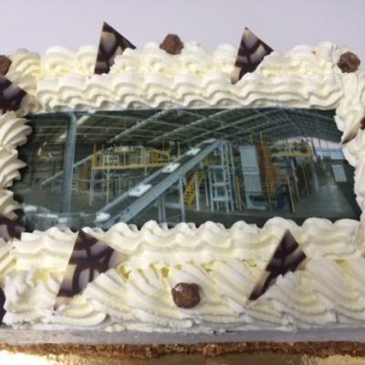 dsm fabriek afbeelding 2