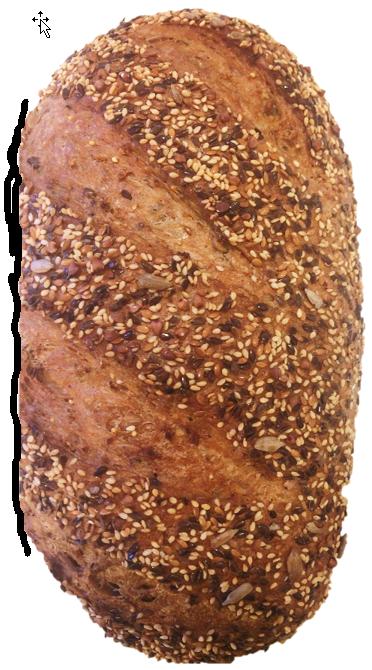 vital brood
